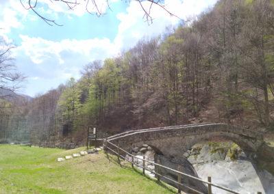 Parco Ravere 04